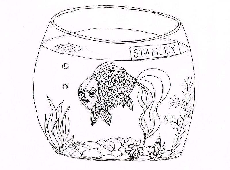 stanley-fish-drawing